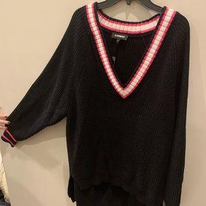 Express v-neck oversized sweater